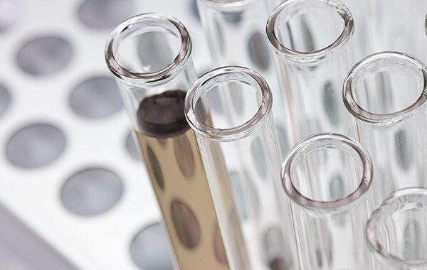 stem cells in a test tube